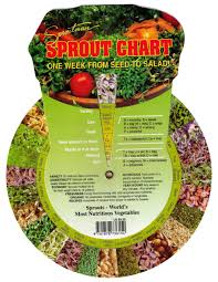 Sproutman S Sprout Chart