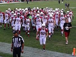 2013 Arizona Cardinals Season Wikipedia