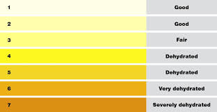 Urine Hydration Chart Australia Gliding Through Summer Flight Safety Australia
