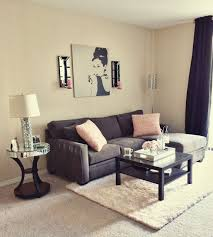 small apartment living room
