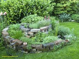 urban herb garden ideas lovely 17 best bylinky images on