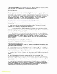 10 Resume With No Work Experience Examples Resume Samples