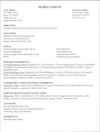Internship Resume Sample For College Students In India Civil