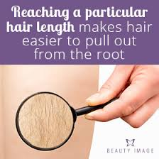 how long does hair have to be to wax