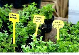 herb garden signs cute garden signs herb garden signs stock photos herb garden signs stock images