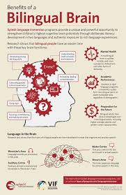 best why teach foreign language images learn benefits of a bilingual brain infographic e learning infographics