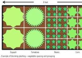 4x8 raised bed vegetable garden layout. 4x8 Raised Bed Vegetable Garden Layout New How To Build Beds Tips For