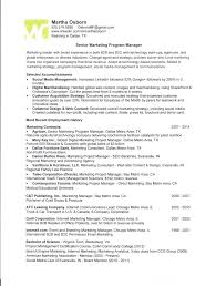 Program Manager Resume Samples Project Management Resume Samples ...