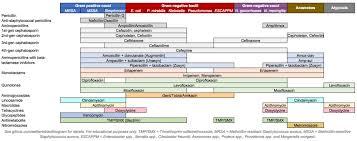 Gram Positive Antibiotics Chart Antimicrobial Spectrum Wikipedia