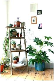 shelf for plants ledge plant bathroom kitchen window shelves window ledge plant shelf ledge ladder shelves shelf for plants