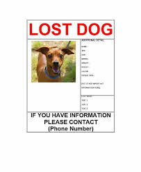 Lost Pet Flyer Maker