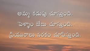 Hate Love Telugu Quotes