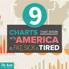 Everyday Diet Chart 9 Charts That Show The Standard American Diet