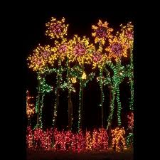 Bellevue Botanical Garden Holiday Lights Bellevue Botanical Garden Bellevue Washington Each