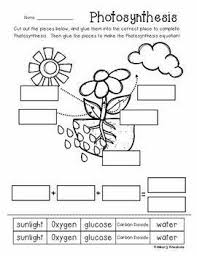 5a496a3f6fb06910d72fb0bcecacae35 plant science science fun 359 best images about recursos maestros on pinterest cut and on meiosis and mitosis comparison worksheet