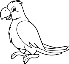 Small Picture Sweet Parrot Coloring Page Wecoloringpage
