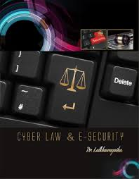 Cyber Law Cyber Law E Security Horizon Books