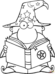 the funny wizard holding a magic book
