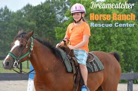 Dream Catchers Horse Ranch A Day At DreamCatcher Ranch in Clermont Florida Great Things 3