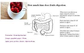 Time Taken For Fruit Digestion