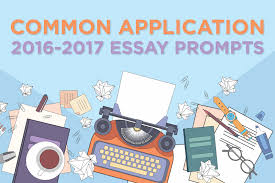Common Application Essay Option   Tips   Personal Growth Pinnacle