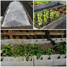 easy care vegetable garden design raised beds examples