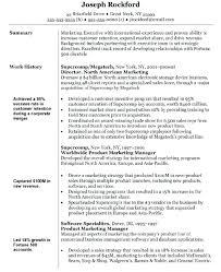 Vp Corporate Communication Resume Resume Template Vice President