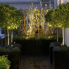 external lighting ideas. Putting LED Spike Lights At The Base Of Trees External Lighting Ideas N