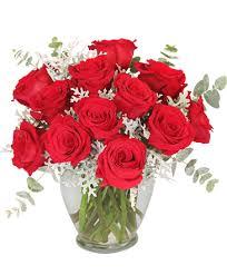 guilty plere dozen roses