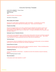 Executive Summary Template For Report Fresh Executive Summary Report Template Professional Templates 1