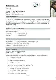 Sample Of A Resume Summary Resume Statement Resume Personal ...