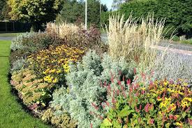 raised bed vegetable garden soil gardening for beginners how to build beds start
