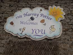 Image result for harray potter -harry