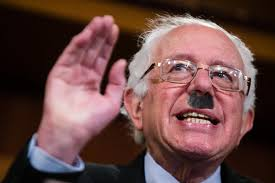 Image result for bernie hitler