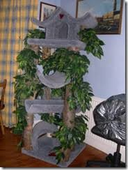 cat trees for sale. I Am Selling My Cat Palace Tree To Help A Friend Raise Money For Overseas Medical Treatment. Trees Sale