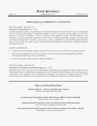 Investment Banking Resume Professional Template Bank President