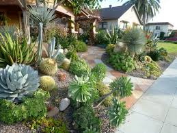 Small Picture Best 25 Succulent landscaping ideas only on Pinterest