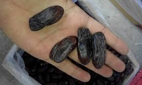 نتیجه تصویری برای قیمت خرما ربی برای فروش