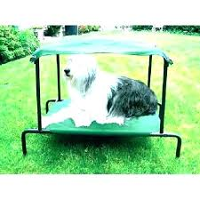 Outdoor Raised Dog Bed Original Elevated Pet Bed By Small Nutmeg ...