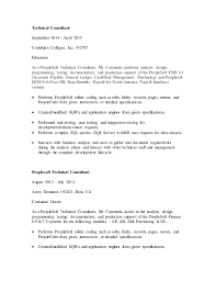 technical consultant peoplesoft technical