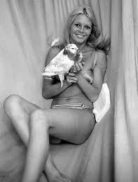 voll Brigitte Bardot Films Foto von Malinde | Fans teilen Deutschland Bilder