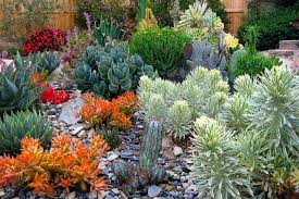 Small Picture A Sparkling Mediterranean Garden with Agave Aloe and Euphorbia
