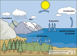 Image result for water cycle diagram