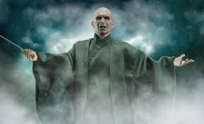 Billedresultat for voldemort
