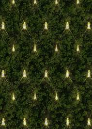 Outdoor Net Lights Warm White Led Net Lights 1 8 X 1 2m Outdoor Warm White Cool White Sparkling Green Cable