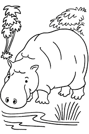 Coloring Pages Animals Jungle Animals Coloring