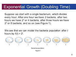 6 suppose we start with a single bacterium which divides every hour