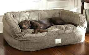 designer dog bed furniture. Beautiful Bed B Rhpinterestcom Furniture Fancy Unique Rhfutchampionspro Luxury Designer  Dog Beds Bed Alluringjpg Pet Supply In