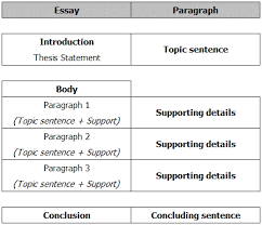Parts Of A Essay Parts Of A Essay Barca Fontanacountryinn Com