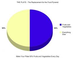 Food Pie Chart Usda Myplate Controversies In Replacing The Usda Food Pyramid